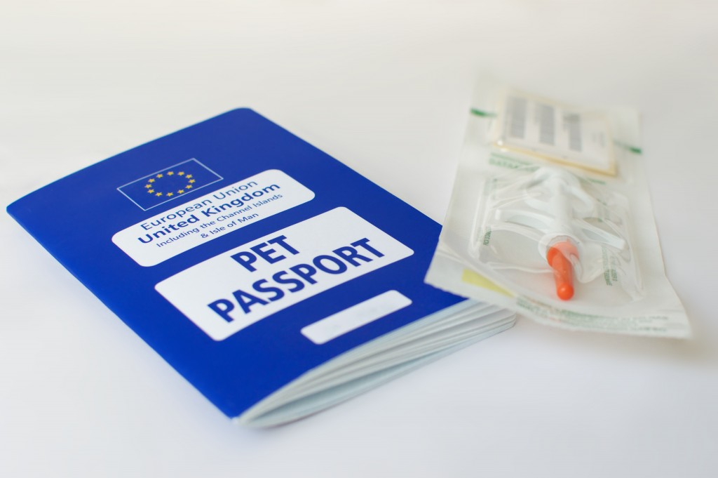 pet passports for travelling with your pet