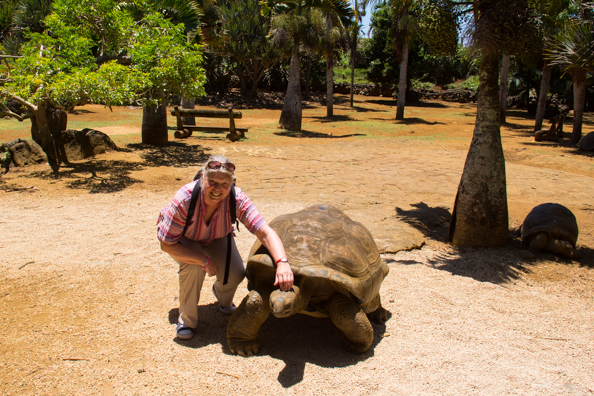 Meeting giant tortoises at Vanille Réserve des Mascareignes on Mauritius