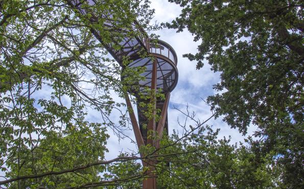 The tree top walk in Kew Gardens in London