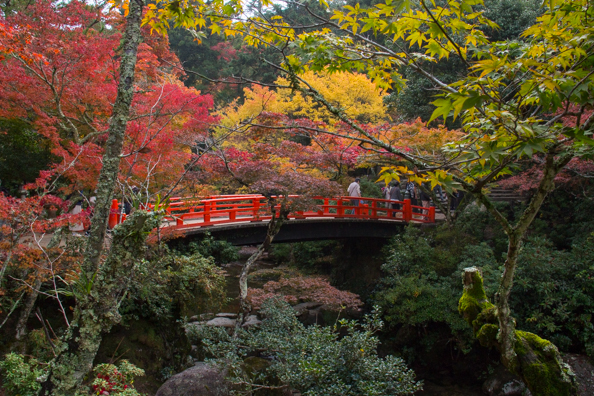 Momijidani Park on Miyajima Island, Hiroshima in Japan