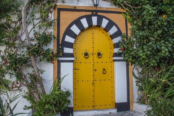 A traditional Tunisian door in Sidi Bou Said in Tunisia