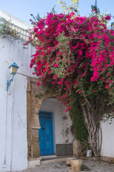 Traditional colours in Sidi Bou Said in Tunisia