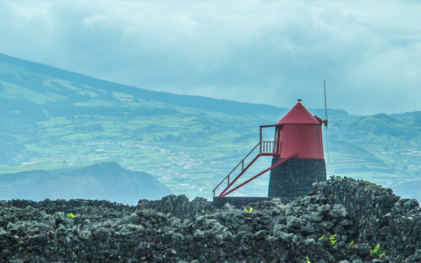 Viticulture landscape and windmill on Pico Island in the Azores