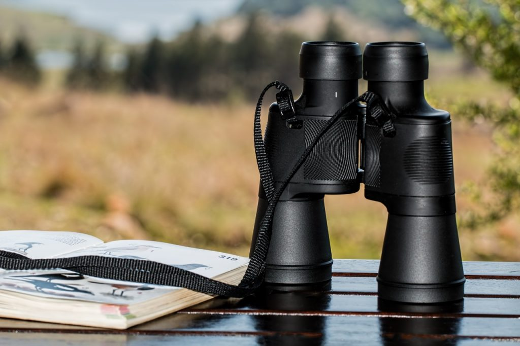 best binoculars for travelling