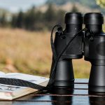 Best Binoculars for Travelling: The Beauty is in the Detail